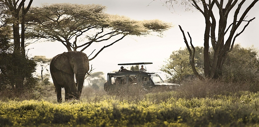 LUXUSREISEN - TRAVEL IN LUXURY  TANSANIA_LUXUS SAFARIS TANSANIA**TREASURES OF TANZANIA
